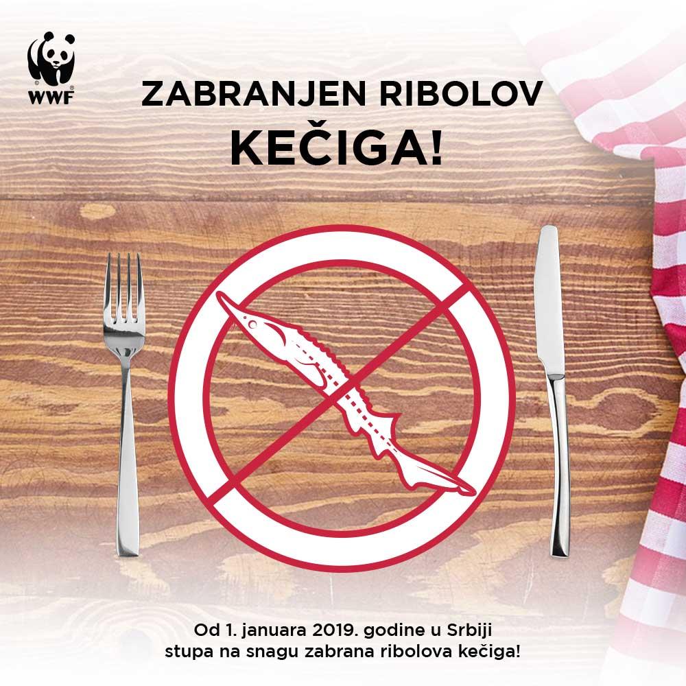 Zabrana ribolova kečiga u Srbiji