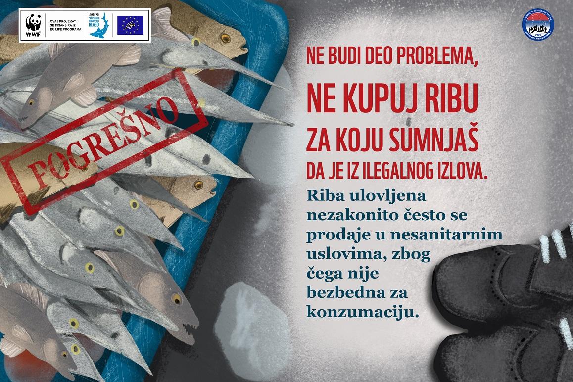Riblji fond Srbije pod velikim pritiskom ilegalnog lova
