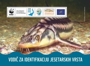 Vodi 300x220 - Održana obuka za ribočuvare o zakonskim procedurama i procedurama u praksi u ribarstvu
